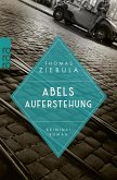 Abels Auferstehung (eBook, ePUB)
