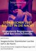 Sexgeschichte: Stürmischer Lust bis tief in die Nacht (eBook, ePUB)