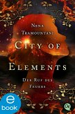 City of Elements 4 (eBook, ePUB)