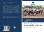 Matrix-Metalloproteinasen bei der Fortpflanzung von Büffeln