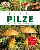 Lexikon der Pilze: Bestimmung, Verwendung, typische Doppelgänger (eBook, ePUB)
