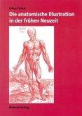 Die anatomische Illustration in der frühen Neuzeit (Mängelexemplar)