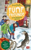 Fünf Freunde und das Weihnachtsgeheimnis (eBook, ePUB)