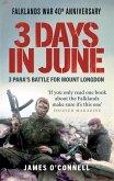 Three Days In June (eBook, ePUB)