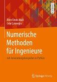 Numerische Methoden für Ingenieure (eBook, PDF)
