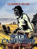 Peter Camenzind (eBook, ePUB)