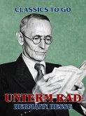 Unterm Rad (eBook, ePUB)