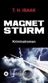 MAGNETSTURM (eBook, ePUB)