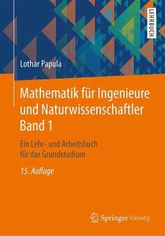 Mathematik für Ingenieure und Naturwissenschaftler Band 1 (eBook, PDF) - Papula, Lothar