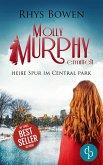 Heiße Spur im Central Park (eBook, ePUB)