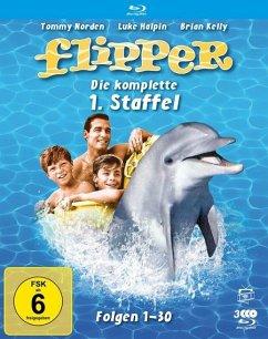 Flipper-Die komplette 1.Staffel (3 Blu-rays) (F - Kelly,Brian/Norden,Tommy