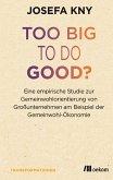 Too big to do good? (eBook, PDF)