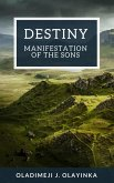 Destiny (eBook, ePUB)