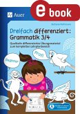 Dreifach differenziert Grammatik 3 4 (eBook, PDF)