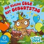 Die kleine Eule hat Geburtstag (eBook, ePUB)