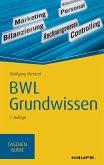 BWL Grundwissen (eBook, ePUB)