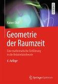 Geometrie der Raumzeit (eBook, PDF)