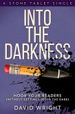 Into The Darkness (eBook, ePUB)