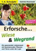 Erforsche ... Wiese & Wegrand