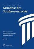 Grundriss des Strafprozessrechts (eBook, PDF)