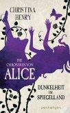 Dunkelheit im Spiegelland / Die Dunklen Chroniken Bd.3 (eBook, ePUB)