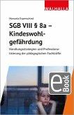 SGB VIII § 8a - Kindeswohlgefährdung (eBook, PDF)