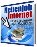 Nebenjob Internet (eBook, ePUB)
