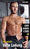 Gay Hardcore 18: Volle Ladung (eBook, ePUB)