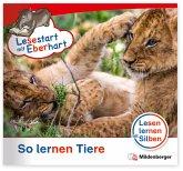 Lesestart mit Eberhart: So lernen Tiere / Lesestart mit Eberhart - Lesestufe 3 Sonderheft