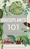 Houseplants 101: How to choose, style, grow and nurture your indoor plants.