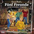 Folge 85: Fünf Freunde und der verschwundene Wikingerhelm (MP3-Download)