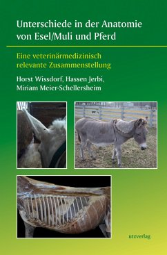 Unterschiede in der Anatomie von Esel/Muli und Pferd - Wißdorf, Horst;Jerbi, Hassen;Meier-Schellersheim, Miriam
