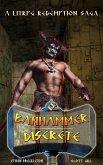 Discrete (Banhammer Chronicles Prequels, #1) (eBook, ePUB)