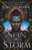 Son of the Storm (eBook, ePUB)