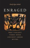 Enraged (eBook, PDF)