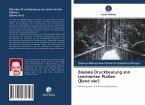 Biaxiale Druckbeulung von laminierten Platten (Band vier)