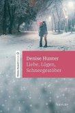 Liebe, Lügen, Schneegestöber (eBook, ePUB)
