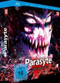 Parasyte -the maxim- (Gesamtausgabe)