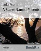 A Storm Named Phoenix (eBook, ePUB)