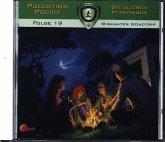 Pollution Police - Die kleinen Pfadfinder - Riskanter Roadtrip, 1 Audio-CD