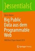 Big Public Data aus dem Programmable Web (eBook, PDF)