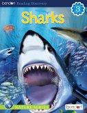 Sharks (eBook, PDF)