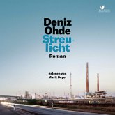 Streulicht (MP3-Download)