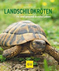 Landschildkröten (Mängelexemplar) - Wilke, Hartmut