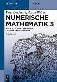Numerische Mathematik 3 (eBook, PDF)