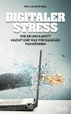 Digitaler Stress (eBook, PDF)