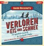 Verloren in Eis und Schnee, 1 MP3-CD (Mängelexemplar)