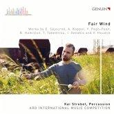 Fair Wind-Ard Music Competition 2019 Award Winner