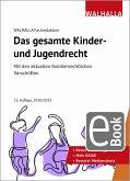 Das gesamte Kinder- und Jugendrecht (eBook, PDF)