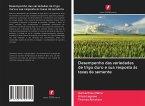 Desempenho das variedades de trigo duro e sua resposta às taxas de semente